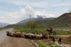 W of Naryn