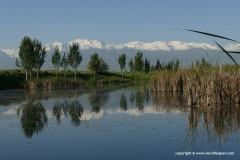 Near Bishkek