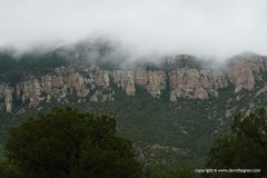 Huachuca Mts.