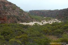 Cape Range N.P.