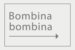 Bombina bombina