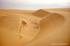 Sand dunes, Baris