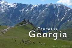 Georgia 2013