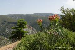 Mt. Parnon N.P.