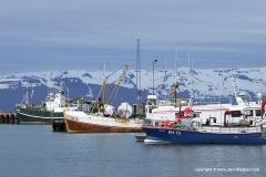 Husavík Harbour