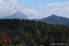 Anamalai Mts.