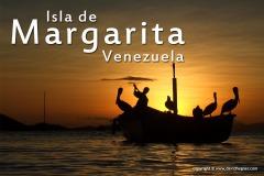 Margarita 2008