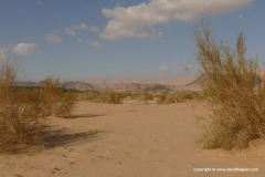 Arava Valley