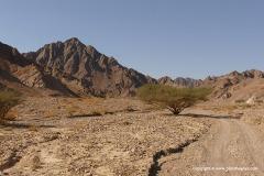 Eilat Mts.