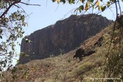 Loima Hills