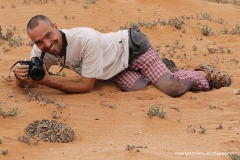 With a Puff Adder