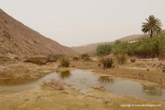 Near Sidi Ifni
