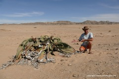 Namib-Naukluft N.P.