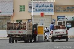 Camels transportation