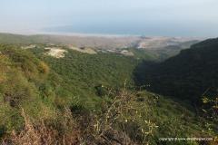 Dhofar Mts.