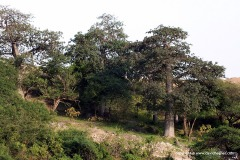 Wadi Hinna
