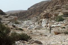 Wadi Ayoon