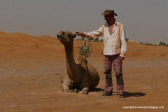 With a camel