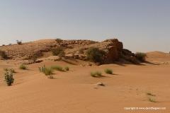 Al Batayeh