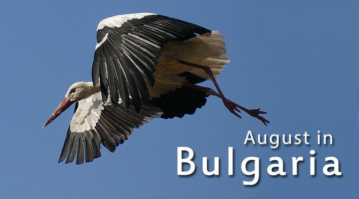 titulka_bulgaria_mala